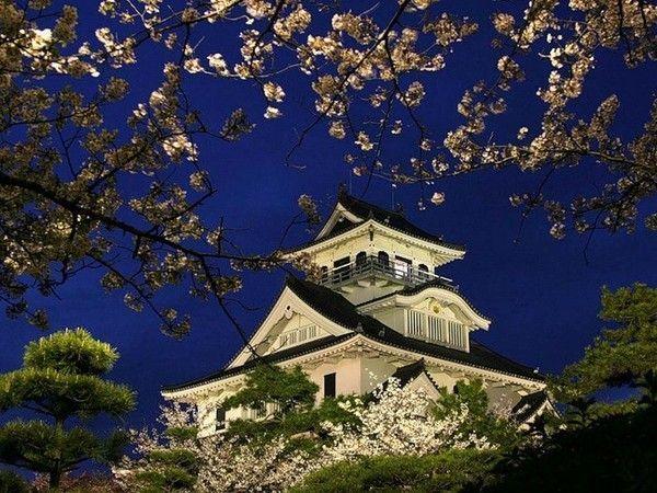 JARDIN FLEURI ....JAPON